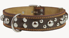 "Real Double Ply Leather Dog Collar Brown Studs 1.5"" wide 19""-24"" neck Rottweiler"