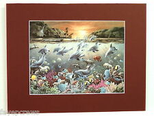 DOLPHIN FISH  PICTURE TROPICAL FISH AQUATIC SEA LIFE MATTED PRINT UNFRAMED 11X14