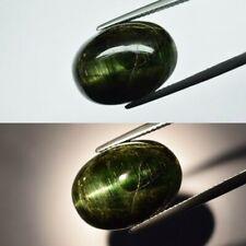 Big! 16.55ct 18x13mm Oval Cab Natural Unheated Green Cat's Eye Tourmaline