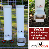 ROYAL ROOSTER Duck Waterer / Drinker & Feeder Set - with Twin Cups