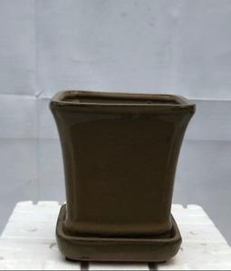 """Olive Green Ceramic Bonsai Pot Square W/ Humidity/Drip Tray 5.25"""" x 5.25"""" x 5.5"""""""