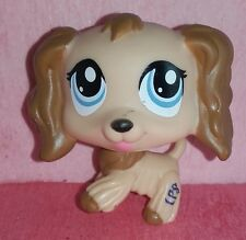 authentic LPS 1318 EPAGNEUL littlest petshop chien DOG spaniel cocker tan HASBRO