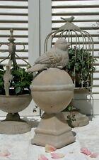 Statue Vogel Creme Weiß Skulptur Zement Shabby Antik Vintage Figur Büste