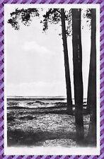 Tarjeta Postal - Campo D' Oberhoffen - El entorno de manoeuvre
