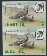 Lesotho (1280) - 1981 Birds Rock Pigeon 2s IMPERF PAIR unmounted mint