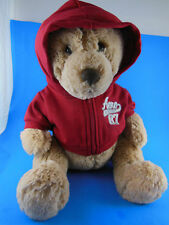 Aeropostale Teddy Bear Plush with Hoodie Sweat Shirt # 87 2010 Very Soft