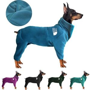 NEW Fashion Dog Clothes Winter Warm The Face Pet Hoodie Jacket Labrador Coat