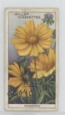 1933 Wills Garden Flowers Tobacco Base #14 Coreopsis Non-Sports Card 1i3