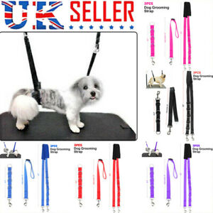 3Pcs Dog Grooming Harness Strap Noose Restraint Belly Pad Set 5 Colours