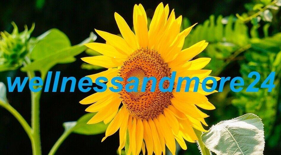 wellnessandmore24