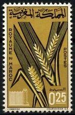 Marocco 1966 SG#176 prodotti agricoli Gomma integra, non linguellato #D49388