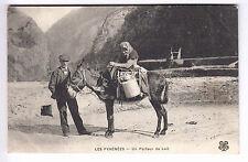 CPA  ANIMAL PYRENEES 64 65 -  COUPLE PORTEUR DE LAIT ANE DONKEY MONTAGNE ~A62