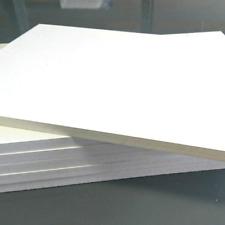 SaniBoard 10mm Rigid Hygienic Board Panel - Plasterboard substitute