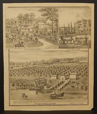 Wisconsin Walworth County Map Loomer Fruit Farm Engravings 1873 Dbl Side J22#56