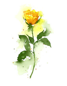 Yellow Rose Floral Watercolor Painting 11 x 14 Art Print by Artist DJR