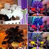 Schöne Straußenfeder Straußenfedern Federn 20 Stk. 30-35 cm Hochzeit Party Deko