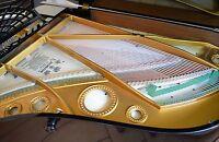 BECHSTEIN Concert Grand Piano Baby fort Studio wing