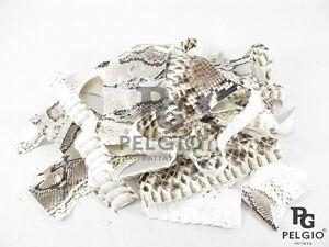 PELGIO Genuine Natural Python Snake Skin Leather Hide Pelt Scraps 100 grams.
