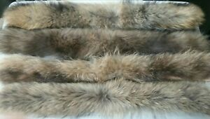 Real fur collar 100% genuine raccoon fur scarf trim for jacket 70cm by 12cm wide