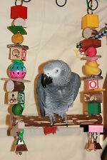 """Parrot Swing (For large Parrots) Colorful  Toy JK439  15"""" to 17"""" L 10"""" W"""