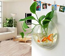 Wall Mounted Fish Tank Kit Bowl Bubble Aquarium Hanging Terrarium Goldfish Bowl