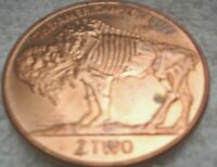 1 x ONE OUNCE COPPER PLATED TOKEN ZOMBUCKS CURRENCY OF THE APOCALYPSE ZOMBUFF