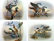Set of 4 - Ducks/Birds S/N Prints by Ron Louque – Great for Bird & Duck Lovers