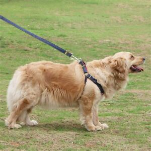 Dog Collars Leash Pet Dog Chest Strap Traction Rope Walking Chain Adjustable