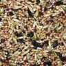 (0,78 EUR pro kg) 25kg FutterXL Sommerstreufutter Streufutter Vogelfutter
