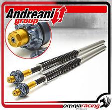 Kit Modifica Forcella Andreani Group Cartridge 105/K01 Kawasaki Z1000 2003/2006