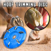 NEW Decron Poultice Boot easy to use horse Hoof abscess infection Large+Bandage