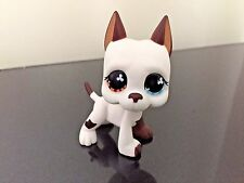 Littlest Pet Shop GREAT DANE Dog #577 Brown & Blue Eye LPS USA Seller