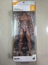 Hot Toys TTM 20 TrueType True Type Body Advanced Muscular Caucasian Figure NEW