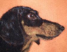 Dachshund / Teckel - Needle Felted Card - Original Artwork - not a print