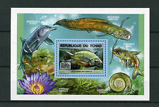 Chad Tchad 2015 MNH Fishes of Lake Chad 1v S/S Fish Poissons