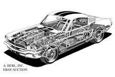 "Ford Shelby GT350 Mustang 1965 – factory technical line drawing ""see through"""