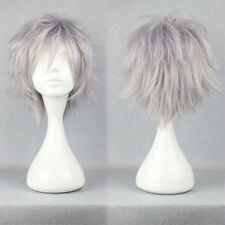 HOT Short Straight Wig Cosplay Party Hair Wigs for Women Men Boy Silvery Gray bs
