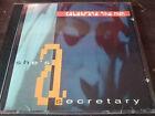 CELEBRATE THE NUN - She's A Secretary CD Single / New Wave / Synth Pop USA