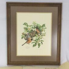 Don Whitlatch Robins Birds Print Signed Numbered 1974 Framed Realism Nature VTG
