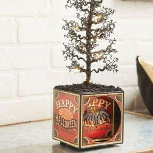 "NEW!~RAZ Imports~15"" Vintage HALLOWEEN BOX WITH LIGHTED BLACK TREE~Pumpkin~Retro"