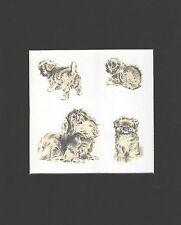 "Pekingese 4 - Dog Art Print - M. Dennis ""N"""