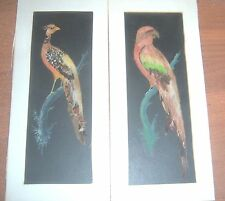 Vintage Mexican Folk Art Birds of Paradise Feather Paintings Lot of 2 c1930s