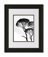 11x14 Classic Curved Black Frame with Glass & White/Black Mat for 8x10