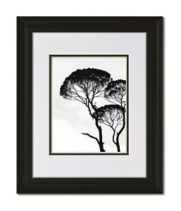 16x20 Classic Curved Black Frame with Glass & White/Black Mat for 12x16