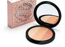 [too cool for shool] Art Class by Rodin 3-Color Face   Highlighter / 11g