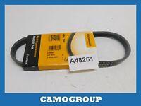 Belt Service V-Ribbed Belt Continental FIAT Cinquecento Seicento One 4PK545