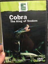 Animal Planet - Cobra : The King Of Snakes region 4 DVD (documentary) * rare *