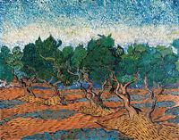 Olive Grove by Vincent van Gogh 60cm x 47cm High Quality Canvas Print