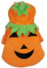 Pumpkin Costumes for Dogs