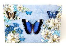 Punch Studio Flap Rectangle Flip Top Nesting Box Blue Butterflies 18762 Medium